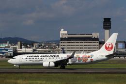 ★azusa★さんが、伊丹空港で撮影した日本航空 737-846の航空フォト(飛行機 写真・画像)