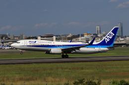 ★azusa★さんが、伊丹空港で撮影した全日空 737-881の航空フォト(飛行機 写真・画像)