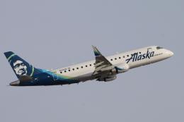 ホライゾン航空 イメージ