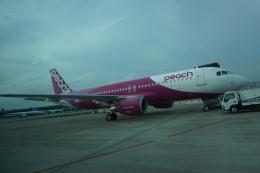 トレインさんが、成田国際空港で撮影したピーチ A320-214の航空フォト(飛行機 写真・画像)