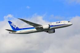 航空フォト:JA812A 全日空 787-8 Dreamliner