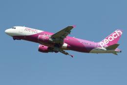 航空フォト:JA813P ピーチ A320