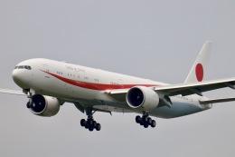 天王寺王子さんが、新千歳空港で撮影した航空自衛隊 777-3SB/ERの航空フォト(飛行機 写真・画像)