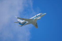 Flying Islanderさんが、那覇空港で撮影した海上保安庁 Falcon 2000EXの航空フォト(飛行機 写真・画像)