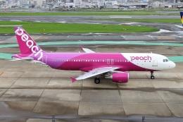 航空フォト:JA828P ピーチ A320