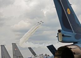 がいなやつさんが、築城基地で撮影した航空自衛隊の航空フォト(飛行機 写真・画像)