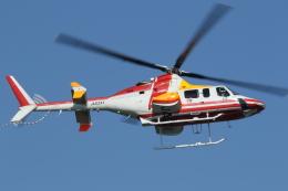 ゴンタさんが、東京ヘリポートで撮影した朝日航洋 430の航空フォト(飛行機 写真・画像)