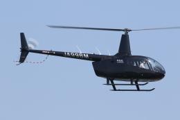 ゴンタさんが、東京ヘリポートで撮影した日本法人所有 R66 Turbineの航空フォト(飛行機 写真・画像)