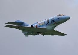 ビッグジョンソンさんが、芦屋基地で撮影した航空自衛隊 U-125A(Hawker 800)の航空フォト(飛行機 写真・画像)