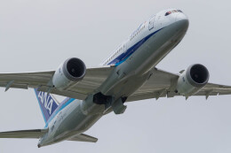Koenig117さんが、那覇空港で撮影した全日空 787-8 Dreamlinerの航空フォト(飛行機 写真・画像)