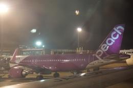 トレインさんが、成田国際空港で撮影したピーチ A320-251Nの航空フォト(飛行機 写真・画像)