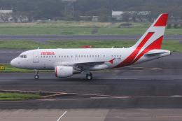 よんろくさんが、成田国際空港で撮影したユニバーサルエンターテインメント A318-112 CJ Eliteの航空フォト(飛行機 写真・画像)