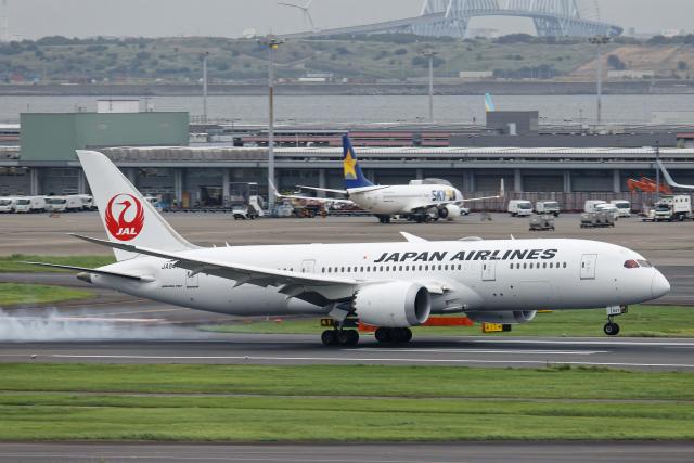 航空フォト:JA847J 日本航空 787-8 Dreamliner