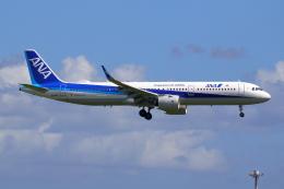 航空フォト:JA143A 全日空 A321neo