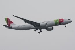 zettaishinさんが、ジェネラル・エドワード・ローレンス・ローガン国際空港で撮影したTAPポルトガル航空 A330-941の航空フォト(飛行機 写真・画像)