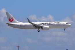 航空フォト:JA325J 日本航空 737-800