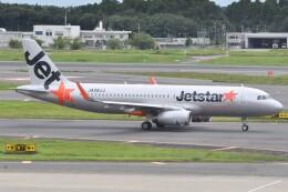 fly A340さんが、成田国際空港で撮影したジェットスター・ジャパン A320-232の航空フォト(飛行機 写真・画像)