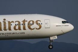 rokko2000さんが、関西国際空港で撮影したエミレーツ航空 777-31H/ERの航空フォト(飛行機 写真・画像)