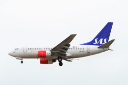 ちっとろむさんが、ロンドン・ヒースロー空港で撮影したスカンジナビア航空 737-683の航空フォト(飛行機 写真・画像)