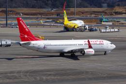 Tatsuya.Kさんが、成田国際空港で撮影したイースター航空 737-808の航空フォト(飛行機 写真・画像)