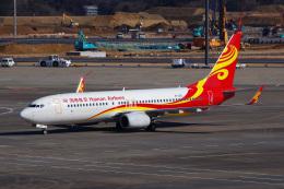 Tatsuya.Kさんが、成田国際空港で撮影した海南航空 737-84Pの航空フォト(飛行機 写真・画像)