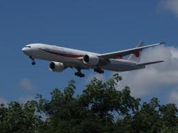 藤助どんさんが、新千歳空港で撮影した航空自衛隊 777-3SB/ERの航空フォト(飛行機 写真・画像)