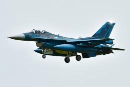 ROSENTHALさんが、小松空港で撮影した航空自衛隊 F-2Aの航空フォト(飛行機 写真・画像)