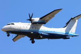 ジョンスミスさんが、横田基地で撮影したアメリカ空軍 C-146A Wolfhoundの航空フォト(飛行機 写真・画像)