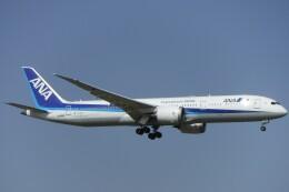 不揃いさんが、成田国際空港で撮影した全日空 787-9の航空フォト(飛行機 写真・画像)