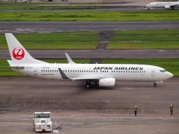 FT51ANさんが、羽田空港で撮影した日本航空 737-846の航空フォト(飛行機 写真・画像)