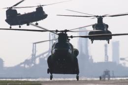 木人さんが、木更津飛行場で撮影した陸上自衛隊 CH-47Jの航空フォト(飛行機 写真・画像)