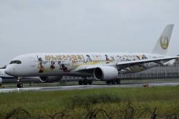k-spotterさんが、伊丹空港で撮影した日本航空 A350-941の航空フォト(飛行機 写真・画像)