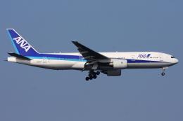 kinsanさんが、羽田空港で撮影した全日空 777-281の航空フォト(飛行機 写真・画像)