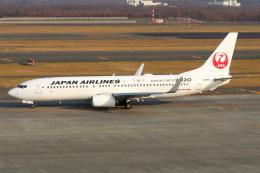 ドガースさんが、新千歳空港で撮影した日本航空 737-846の航空フォト(飛行機 写真・画像)