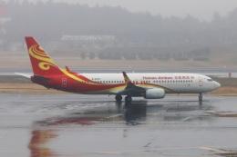 kan787allさんが、成田国際空港で撮影した海南航空 737-84Pの航空フォト(飛行機 写真・画像)