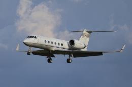 EXIA01さんが、名古屋飛行場で撮影したダイヤモンド・エア・サービス G-IV Gulfstream IV-SPの航空フォト(飛行機 写真・画像)