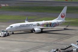 ドガースさんが、羽田空港で撮影した日本航空 737-846の航空フォト(飛行機 写真・画像)