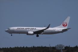 Mr.boneさんが、三沢飛行場で撮影した日本航空 737-846の航空フォト(飛行機 写真・画像)