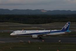 ゆうゆう@NGOさんが、新千歳空港で撮影した全日空 A321-272Nの航空フォト(飛行機 写真・画像)