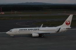ゆうゆう@NGOさんが、新千歳空港で撮影した日本航空 737-846の航空フォト(飛行機 写真・画像)