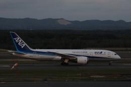 ゆうゆう@NGOさんが、新千歳空港で撮影した全日空 787-8 Dreamlinerの航空フォト(飛行機 写真・画像)