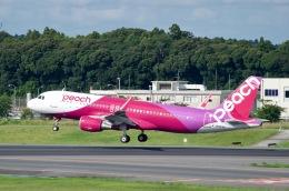 goshiさんが、成田国際空港で撮影したピーチ A320-214の航空フォト(飛行機 写真・画像)