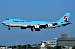 774gonさんが、成田国際空港で撮影した大韓航空 747-8B5F/SCDの航空フォト(飛行機 写真・画像)