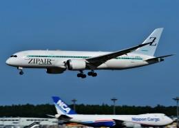774gonさんが、成田国際空港で撮影したZIPAIR 787-8 Dreamlinerの航空フォト(飛行機 写真・画像)