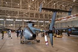 木人さんが、立川飛行場で撮影した陸上自衛隊 OH-6Dの航空フォト(飛行機 写真・画像)