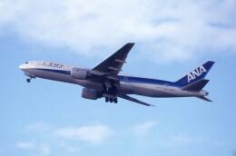 kumagorouさんが、仙台空港で撮影した全日空 777-281の航空フォト(飛行機 写真・画像)