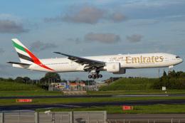 ドガースさんが、成田国際空港で撮影したエミレーツ航空 777-36N/ERの航空フォト(飛行機 写真・画像)