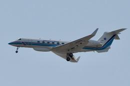 飛行機ゆうちゃんさんが、羽田空港で撮影した海上保安庁 G-V Gulfstream Vの航空フォト(飛行機 写真・画像)