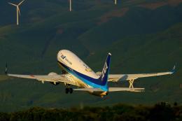 Zakiyamaさんが、熊本空港で撮影した全日空 737-8ALの航空フォト(飛行機 写真・画像)