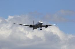 VFRさんが、羽田空港で撮影した全日空 787-8 Dreamlinerの航空フォト(飛行機 写真・画像)